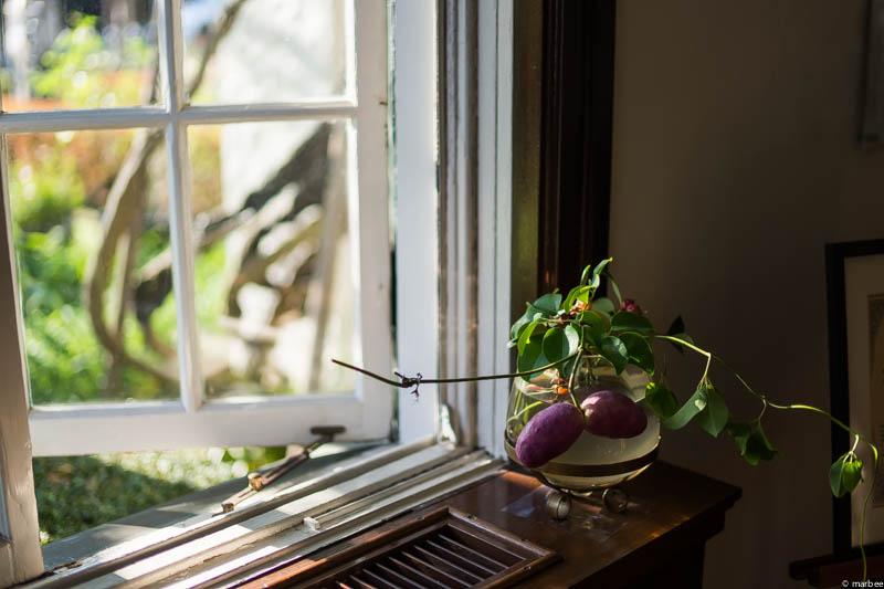 山手111番館 ハロウィーン仕様窓