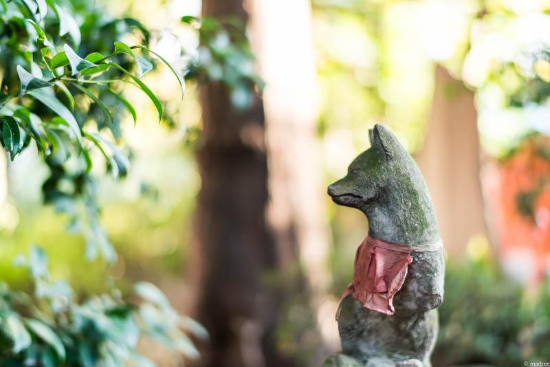 根津神社 狐