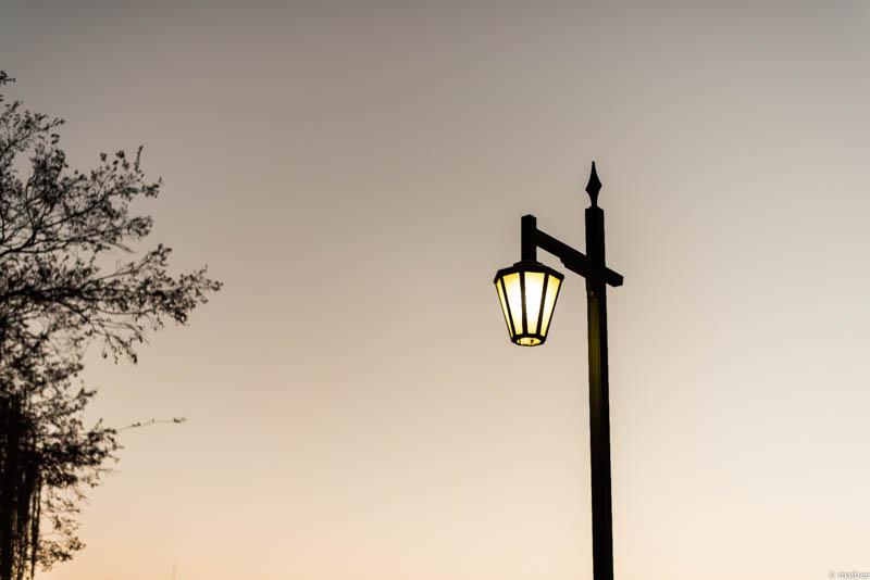 上野公園 外灯
