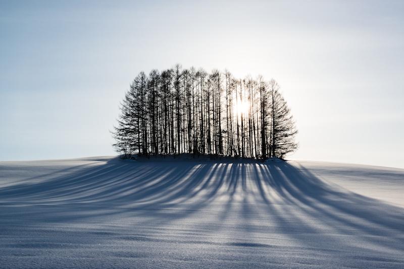 雪とマイルドセブンの丘