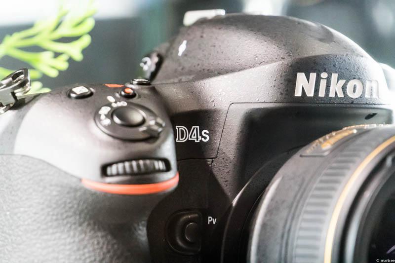 Nikon D4s ロゴUP