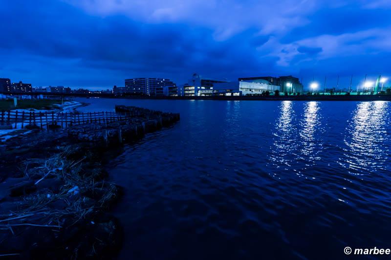 夕方と夜の間 ここは唯一水辺に下りられる