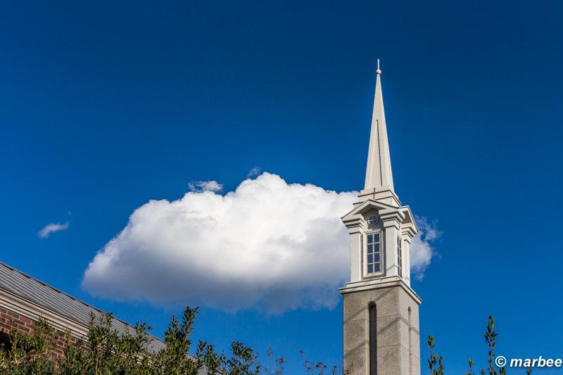 塔と青空 快晴だね。冬の青空は清々しい。