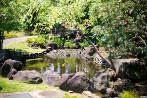 港の見える丘公園小滝