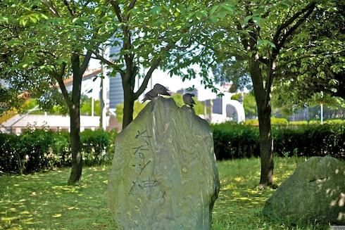記念碑と鳩