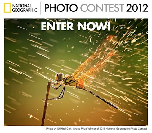 National_Geographic_Photo_Contest