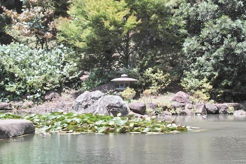 野毛山公園の池