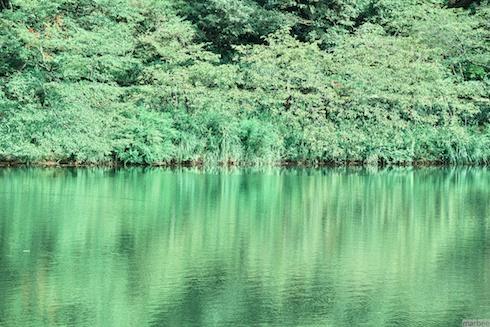 池(緑Ver)
