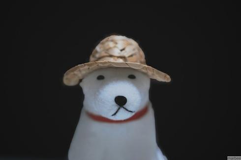 お父さん犬(覆い焼きのスライダーもMAX)